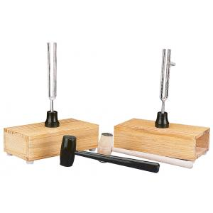 Pair of Tuning Forks on Resonance Box