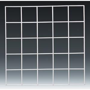 GRID QUADRAT, 25 SQUARE