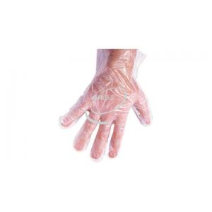 Gloves,Polythene